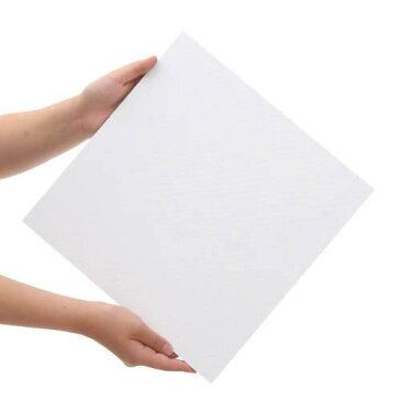 プラパール 60cm水槽用マット ホワイト 30×30cm 2枚【HLS_DU】 関東当日便