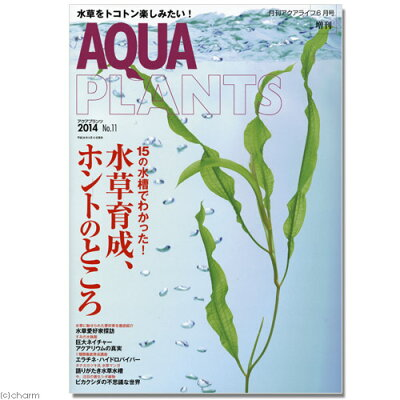 水草をトコトン楽しみたい!アクアプランツ NO.11 2014 書籍 水草 関東当日便