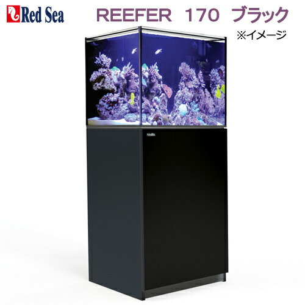 RedSea(レッドシー)REEFER『170』