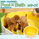 スーパーキャット Pool×Bath(プール・バイ・バース) Mサイズ