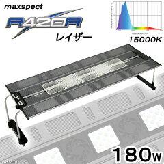 maxspect LEDライティングシステム レイザー R420R 180W 15000K 海…