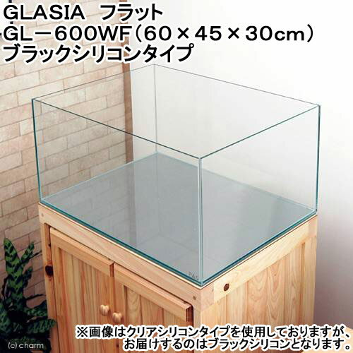 GLASIA フラット GL-600WF(60×45×30cm)ブラックシリコンタイプ
