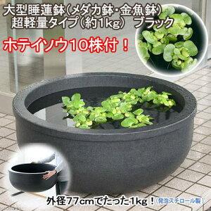 大きくても超軽量!(水辺植物)大型睡蓮鉢(スイレン鉢・メダカ鉢・金魚鉢) 超軽量タイプ(...