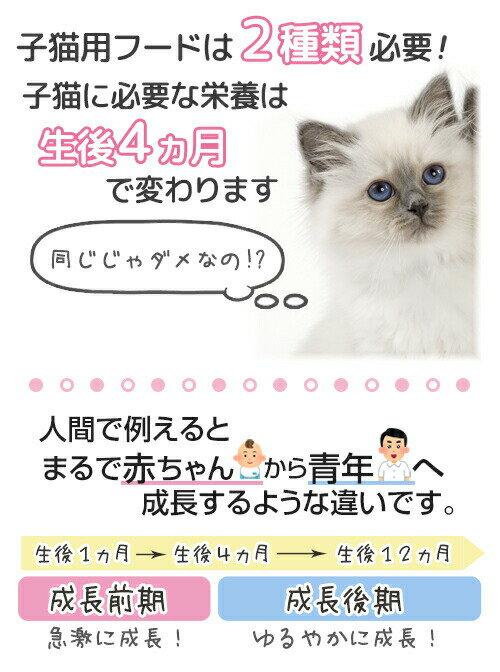 ロイヤルカナン 【お得なケース売り】 生後4〜12ヶ月齢の子猫用 キトン2kgx6袋