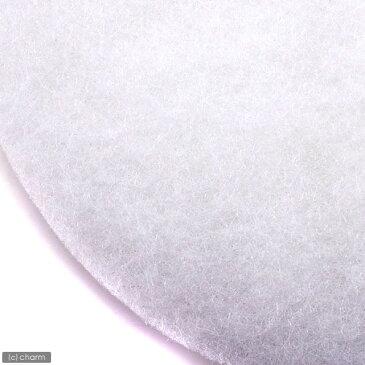 エーハイム 細目フィルターパッド 3枚入 エーハイム500/2213(ろ材コンテナなし)専用ろ材 関東当日便