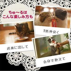 CIAO(チャオ)ちゅ〜るまぐろ14g×4本お買い得6袋入り関東当日便
