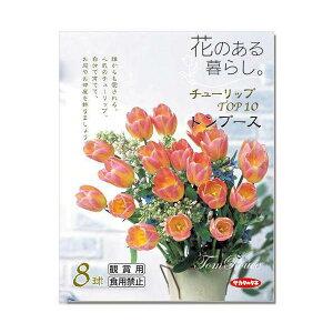 人気品種!(観葉)チューリップ球根「花のある暮らし。TOP10」シリーズ 〜トンプース〜 8球詰