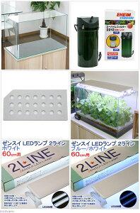60センチ水槽用水耕栽培キット水耕栽培野菜関東当日便