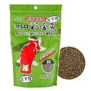 ミシロ彩金魚(胚芽育成)