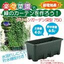 楽々菜園で緑のカーテンを作ろう!【緑のカーテン】楽々菜園 深型 750 モスグリーン(W75.4...