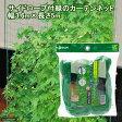 サイドロープ緑のカーテンネット3.6m×5m 家庭菜園 ベランダ菜園 関東当日便