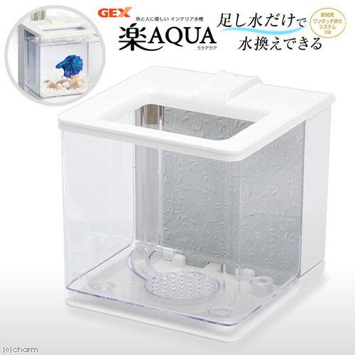 GEX 楽アクア ホワイト 小型水槽 おしゃれ水槽