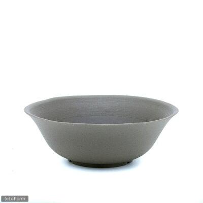 軽量!スイレン・蓮・金魚・メダカに!陶鉢(すえはち) 浅皿型 235 灰いろ 関東当日便