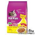 カルカン ドライ かつおと野菜味 1.6kg (小分けパック4袋入) 関東当日便
