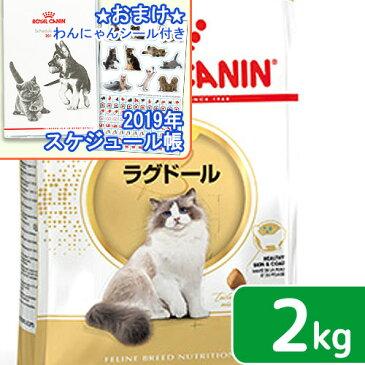 ロイヤルカナン 猫 ラグドール 2kg ジップ付 スケジュール帳おまけ付【HLS_DU】 関東当日便