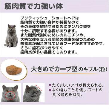 ロイヤルカナン 猫 ブリティッシュ ショートヘア 2kg ジップ付 スケジュール帳おまけ付【HLS_DU】 関東当日便