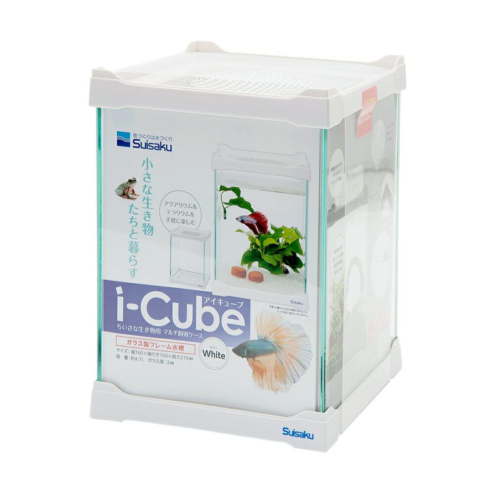 水作 i-Cube アイ・キューブ ホワイト
