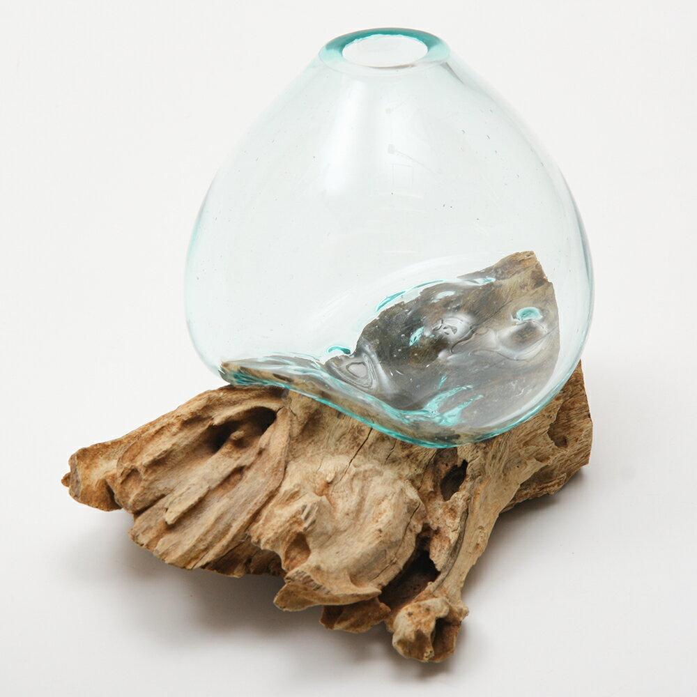 一点物 ラウンドガラス 流木スタンド付(239480)コケ テラリウム ガラス インテリア 瓶