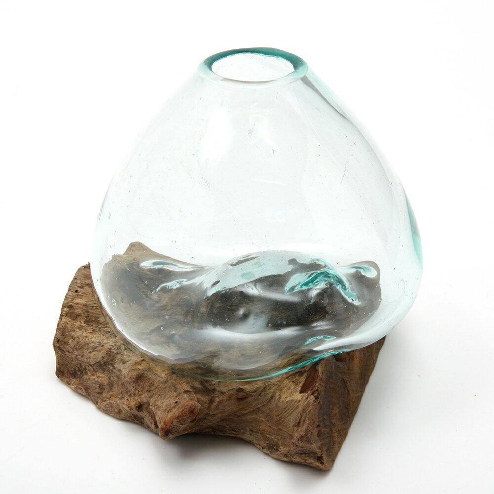一点物 ラウンドガラス 流木スタンド付(239481)コケ テラリウム ガラス インテリア 瓶
