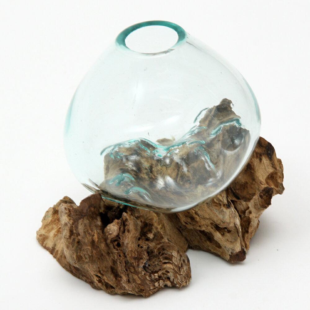 一点物 ラウンドガラス 流木スタンド付(239486)コケ テラリウム ガラス インテリア 瓶