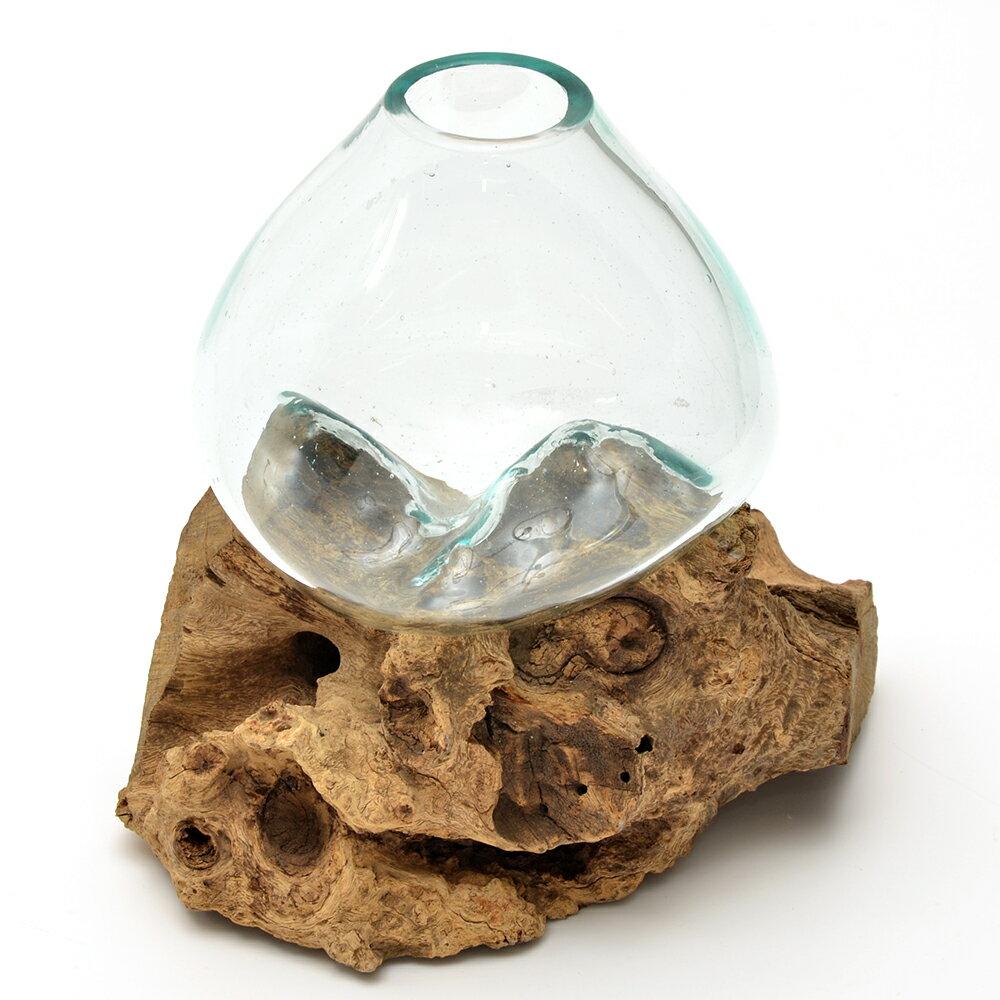 一点物 ラウンドガラス 流木スタンド付(239489)コケ テラリウム ガラス インテリア 瓶