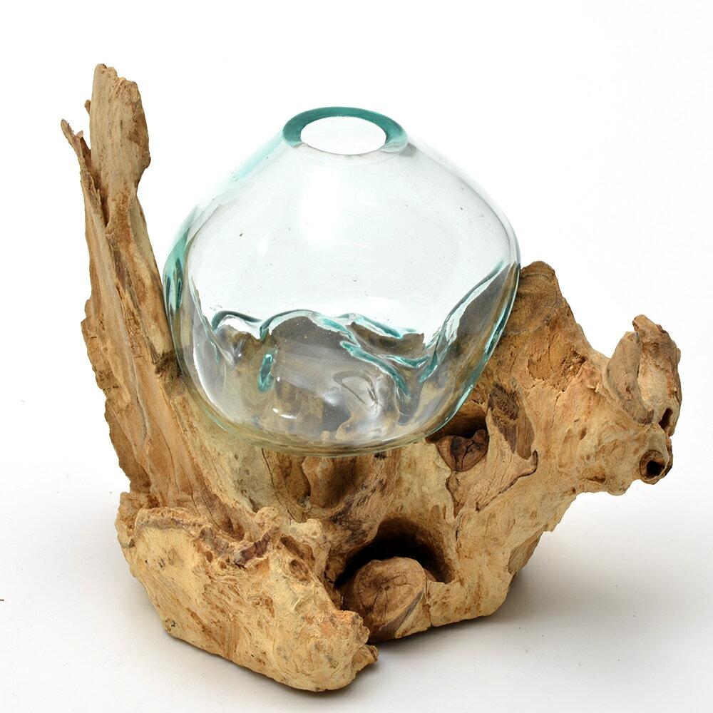 一点物 ラウンドガラス 流木スタンド付(239491)コケ テラリウム ガラス インテリア 瓶