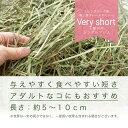 令和元年産 新刈 スーパープレミアムホースチモシー ベリーショート チャック袋 600g×2袋(1.2kg) お一人様3点限り 関東当日便 2