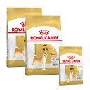 ロイヤルカナン 柴犬 8歳からのフード切り替えセット 成犬用3kg×2袋 ジップ付 + 中・高齢犬用 ...