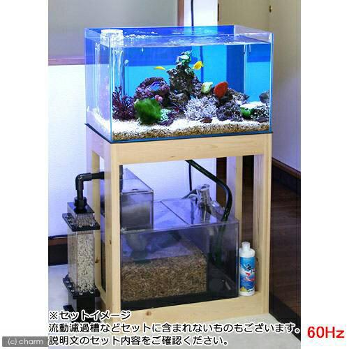 (大型)(海水魚)オーバーフロー水槽セット クロミス60 海水スターターセット 60Hz(西日本用) 別途大型手数料・同梱不可・代引不可:charm
