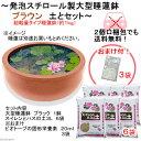 大型睡蓮鉢(スイレン鉢) 超軽量タイプ(約1kg) ブラウン+水生植物専用培養土セット(おまけ付)(同梱不可)