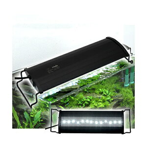 Aqullo OVAL LED BRIGHT300