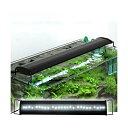 アクロ OVALブラック LED 600 3250lm BRIGHT Aqullo Series 60cm水槽用照明 沖縄別途送料 関東当日便