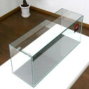 GEX グラステリア スリム600 (60×20×25)60cm水槽(単体) ジェックス お一人様1 ...