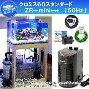 アクア用品1>オーバーフロー水槽>幅60cm〜50Hz オーバーフロー水槽セット クロミス60 スタ...