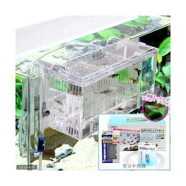 (熱帯魚)外掛式産卵飼育ボックス サテライトL スターターセット 国産ミックスグッピー 1ペア 付 本州四国限定