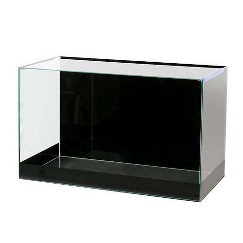 バックスクリーン貼付済 ジェットブラック 前側面5cm帯タイプ オールガラス60cm水槽