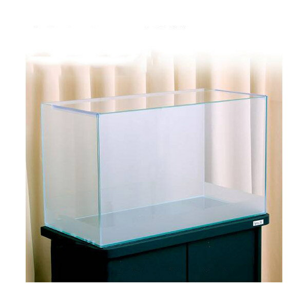 バックスクリーン貼付済 サンド オールガラス60cm水槽 アクロ60N 前側面5cm帯タイプ