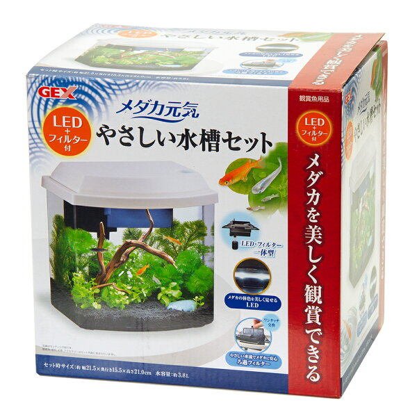 GEXメダカ元気LED+フィルター付やさしい水槽セット初心者関東当日便
