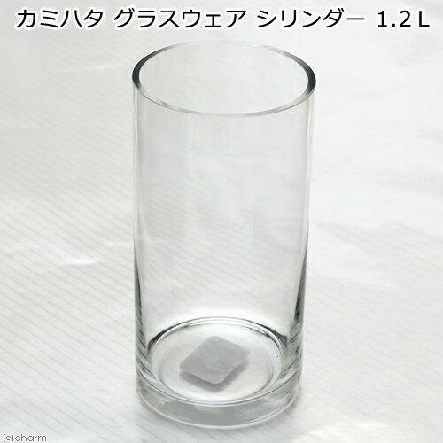 カミハタ グラスウェア シリンダー 1.2L