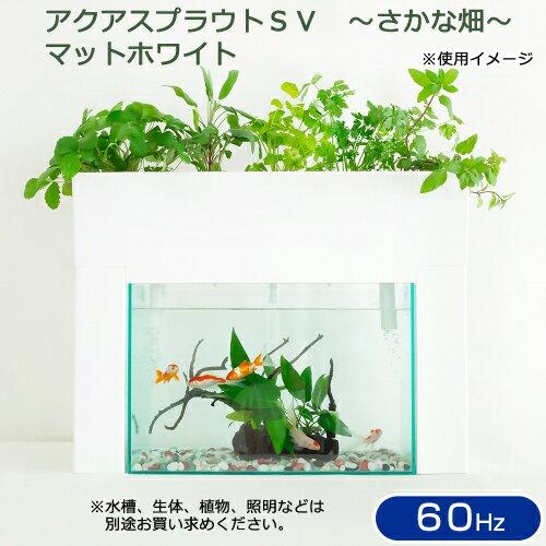 アクアスプラウトSV 〜さかな畑〜 マットホワイト