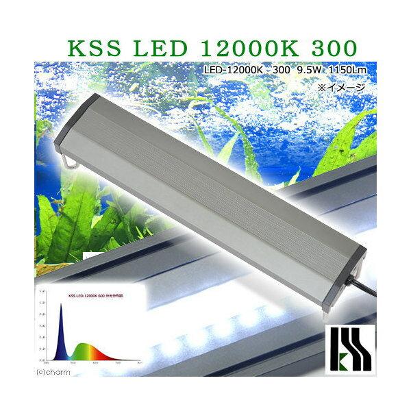 興和 KSS LED 12000K 300