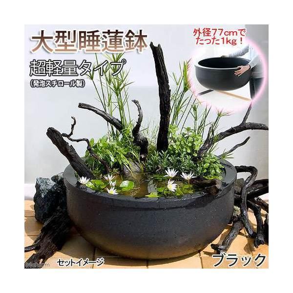 大型睡蓮鉢(メダカ鉢)超軽量タイプ(約1kg)ブラック 睡蓮鉢・金魚鉢・メダカ鉢 才数200