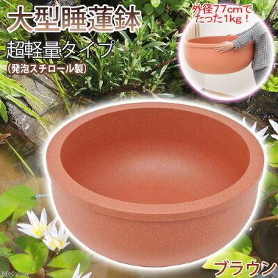 大きくても超軽量!大型睡蓮鉢(スイレン鉢)(メダカ鉢・金魚鉢) 超軽量タイプ(約1kg) ブ...