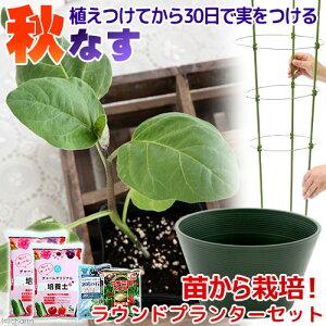 大容量で収穫量UP!(観葉)私の菜園 秋ナス 苗から栽培セット(ラウンドプランター 8点セッ...