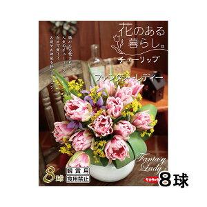人気上昇中品種!(観葉)チューリップ球根「花のある暮らし。人気上昇中品種」シリーズ ~フ...