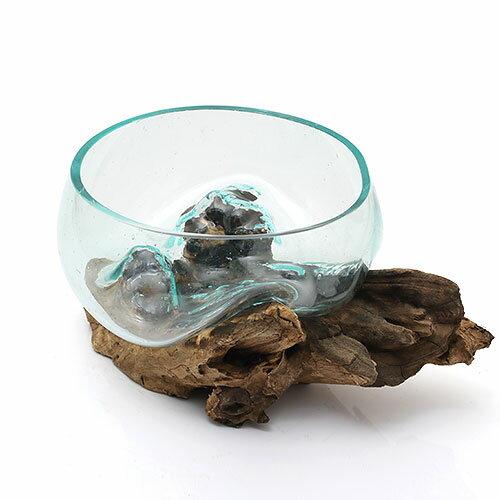 一点物 ラウンドガラス 流木スタンド付(380477)コケ テラリウム ガラス インテリア 瓶