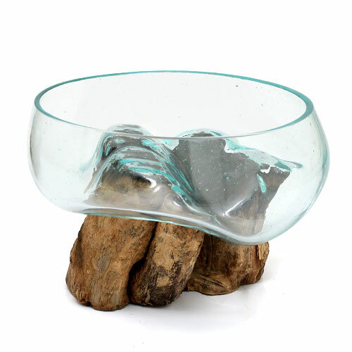 一点物 ラウンドガラス 流木スタンド付(380512)コケ テラリウム ガラス インテリア 瓶