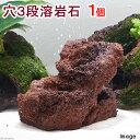 独特な風合い!穴三段溶岩石 1個 関東当日便