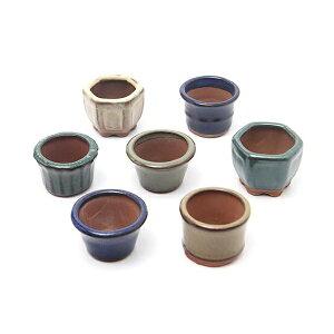Bol de soja Yamano herbe de forme aléatoire Pot de fleur d'herbe Yamano Mini mini pot de bonsaï (10 pièces)