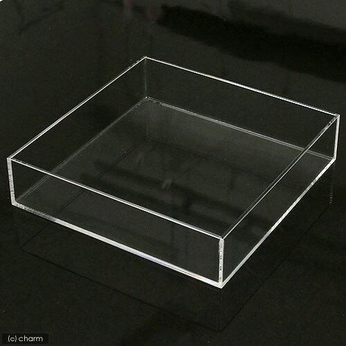 アクリル水槽(サイズ:30×30×7cm) 訳あり